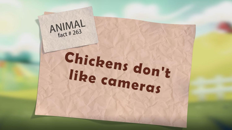 Animation: Animal Fact