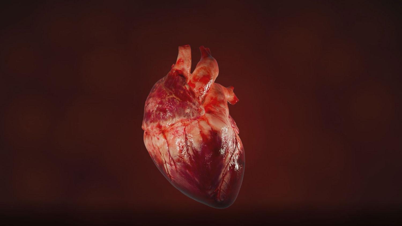 Animation: Herzschlag